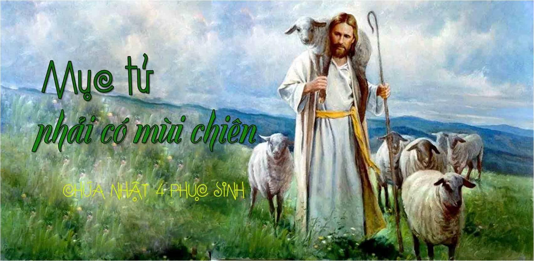 Image result for HINH Ngày Cầu nguyện cho ơn gọi